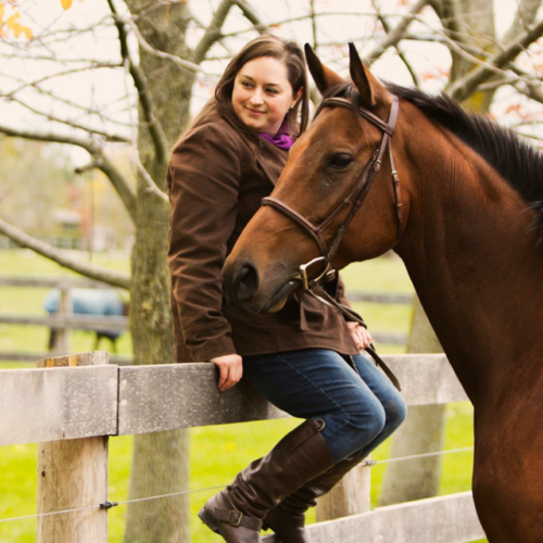 Rebecca Roy's email & phone | Greenhawk Harness & Equestrian